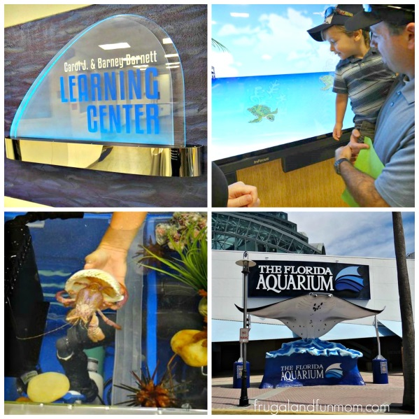 The Carol J. and Barney Barnett Learning Center at the Florida Aquarium! A Fun and Educational Visit!