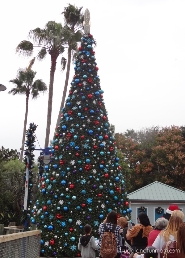 Christmas Trees at SeaWorld Orlando