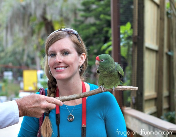 Meeting a friendly bird at the Central Florida Zoo