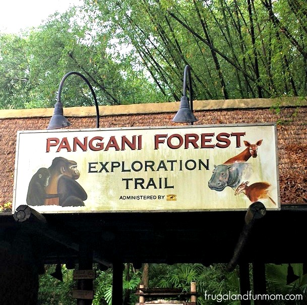 Animal Kingdom Pangani Forest