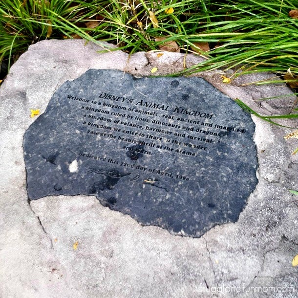 Dedication stone at Disney's Animal Kingdom