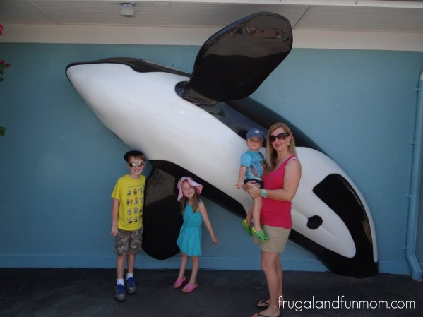 Things to Do and See At Seaworld Orlando Theme Park Florida