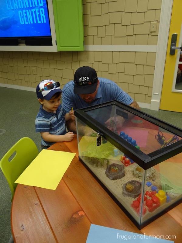 The Carol J. and Barney Barnett Learning Center at the Florida Aquarium! A Fun and Educational Visit!