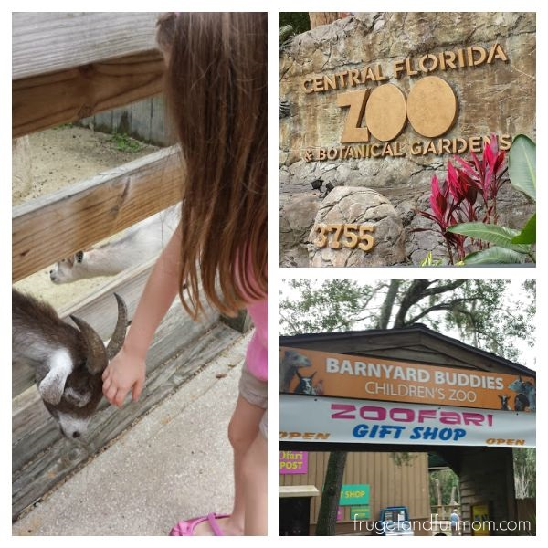 Barnyard Buddies Zoo at the Central Florida Zoo